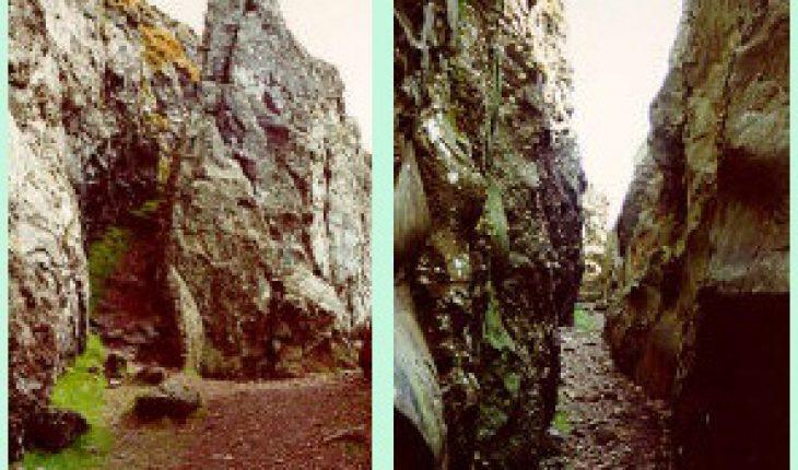 paths-whangie